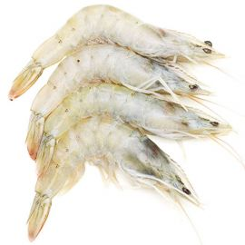 White Prawns - Medium, Unpeeled
